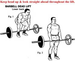 deadlift Want BIGGER Muscles in Less Time?