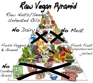 Raw Vega Pyramid Raw Thoughts about the Raw Food Diet