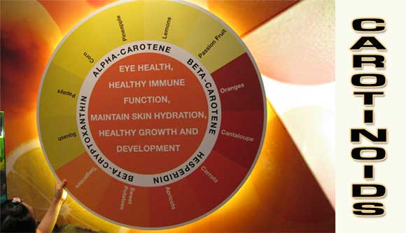 CAROTINOID Longer Life for those with High Alpha Carotene Intake