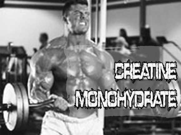 Creatine Monohydrate Review