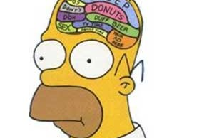 homer simpson brain sleep, donuts, duff beer...