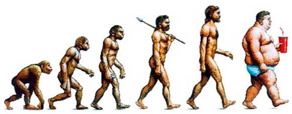 obesity evolution How Does Your Income Affect Your Risk of Obesity?