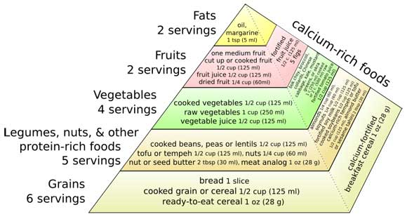 vegan food pyramid Is It Healthy to Eat a Vegan Diet?