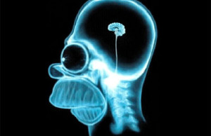 Homer Simpson X-ray of his Brain humor