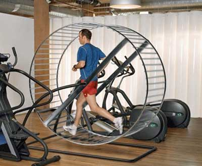 Wheel treadmill Obesity, Exercise and Arthritis Pain study