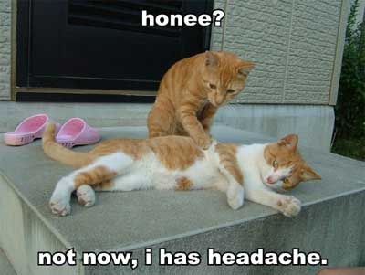headache humor Where Do Morning Headaches Come From?