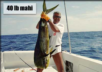 40lb mahi How I Used My BlackBerry to Lose 40 Pounds