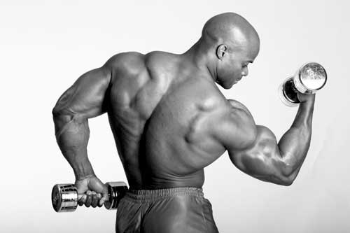 Flex wheeler bodybuilding pose - curling biceps