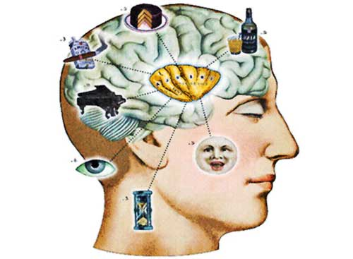 the use of cognitive psychology in understanding the processes of the mind and body