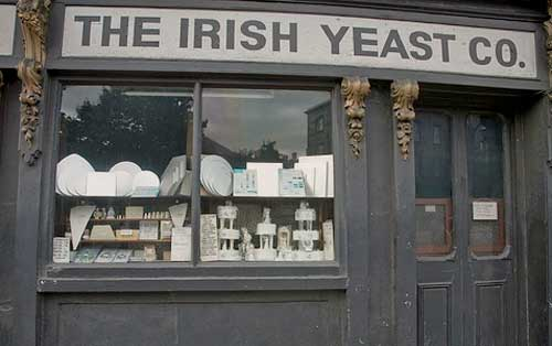 The Irish Yeast Company How to Identify the Various Types of Yeast Infections