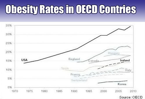 obesity rates OECD Finds Obesity Rates Increasing in Developed Nations