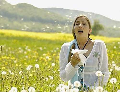 allergy season Natural Treatments for Allergies