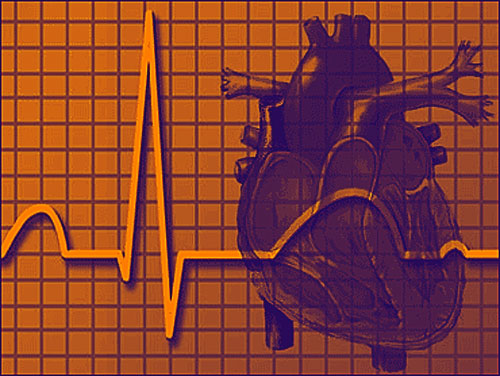 stem cells linked to heart disease