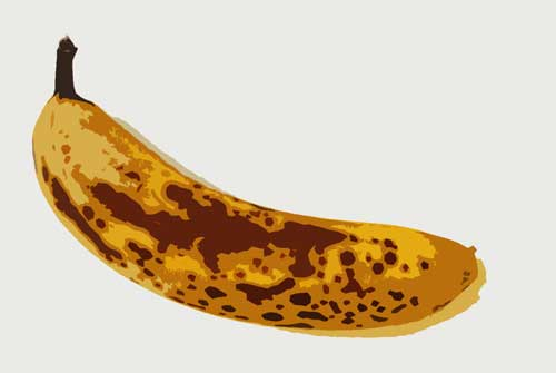 banana Just Say No to Brown Bananas
