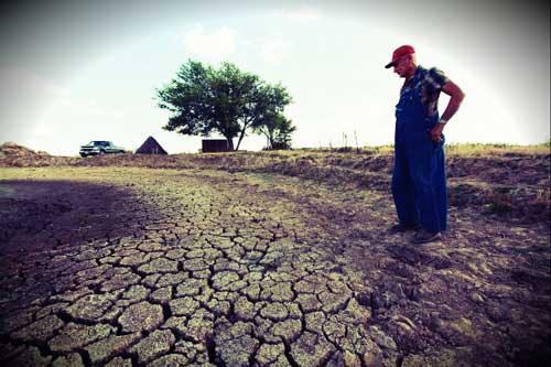 Farmer looking at drought in summer