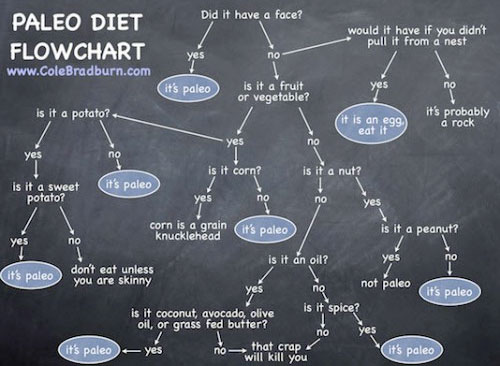 Paleo Diet FlowChart and Infographic