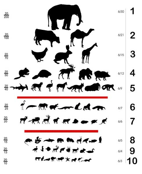 How To Recognise Your Child Has An Eyesight Problem on All Worksheets Evolution Printable Guide