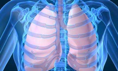 lungs asthma graphic