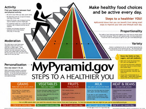 Food Guide Pyramid Mypyramid And Myplate Useful At All For Nutrition on Myplate Nutrition Guide