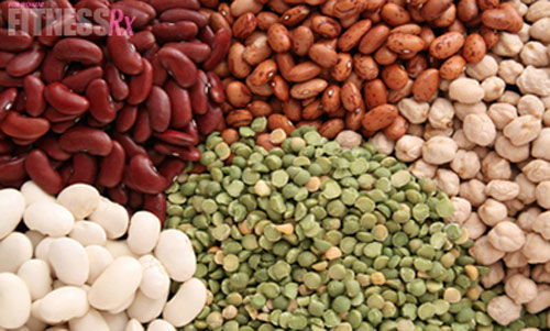 Benefits of Plant Protein vs. Animal Protein
