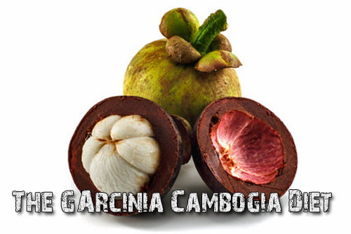 The-Garcinia-Cambogia-Diet