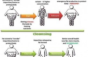 Dieting vs Cleansing