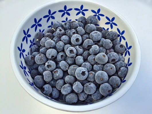 blueberries-1596195_640